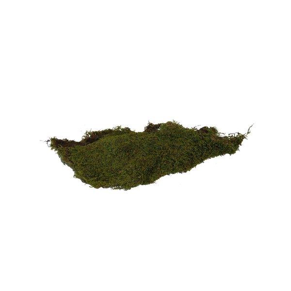Lappenmoos grün 50g