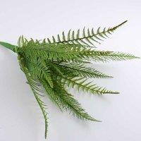 Farnpflanze 40cm