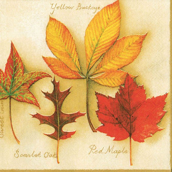 Ambiente Serviette Herbstblätter 33x33cm 20 Stück