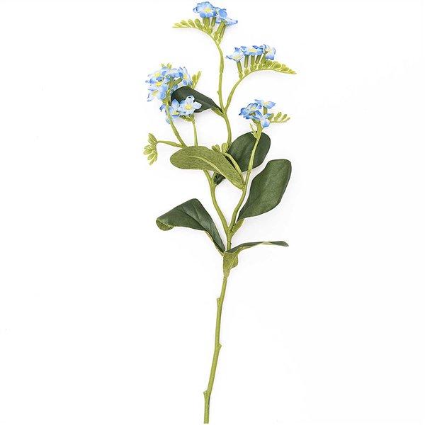 Vergiss-mein-nicht Pick blau 36cm