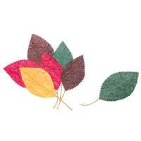 Blätter Mix 12teilig