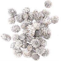 Zapfen klein weiß-natur 110g