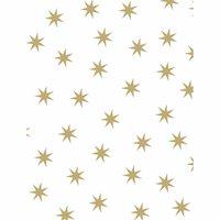 MARPA JANSEN Fotokarton Sterne weiß-gold 50x70cm 300g/m²