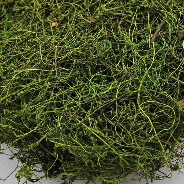 Dekomoos grün 30g