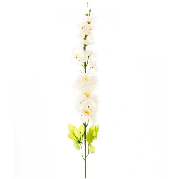 Rittersporn weiß 75cm