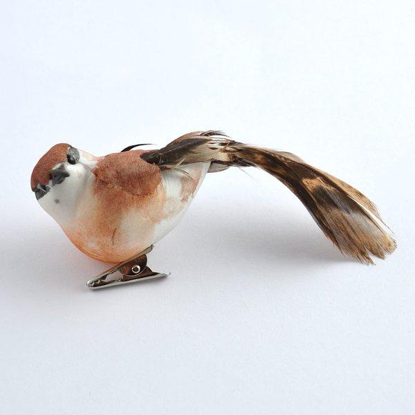 Vogel braun 8,5cm