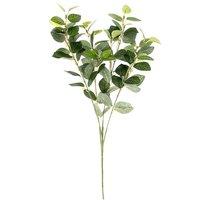 Euonymus grün 55cm