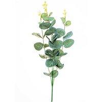Eukalytusbusch 40cm