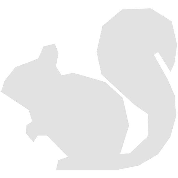 Rico Design Cardboard Eichhörnchen 9,7x8,9cm 3 Stück