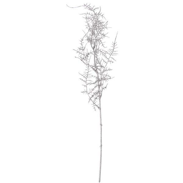 Aspargus-Farn Glitter silber 48cm