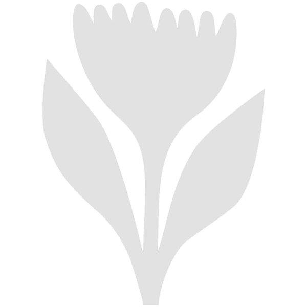 Rico Design Cardboard Tulpen 7,7x10,5cm 3 Stück