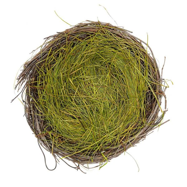 Ohhh! Lovely! Naturnest mit Ostergras 20cm